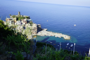 Vernazza from above (day)