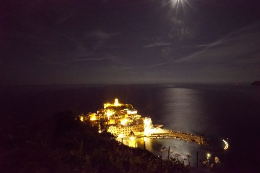 Vernazza by night, from above.